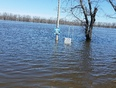 flooding 2017