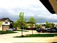 Beautiful winnipeg - Winnipeg, MB, CA