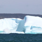 Iceberg at Outer Cove