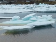Pack ice in Laurenceton - Northern Arm, NL