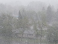 Suddenly the wind speeds up with snow rain mixture - Calgary, AB