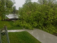 front of my house