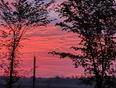 Morning sky - Jasper, ON