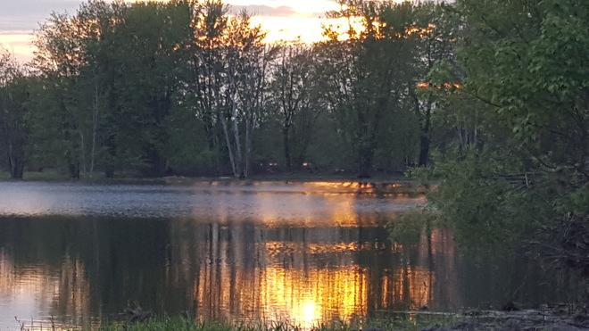 petrie island sunset