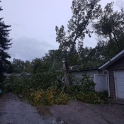 Wind damage in Midnapore (Calgary)