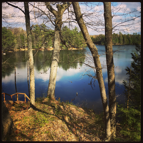 Levi Lake