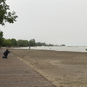 Woodbine beach area