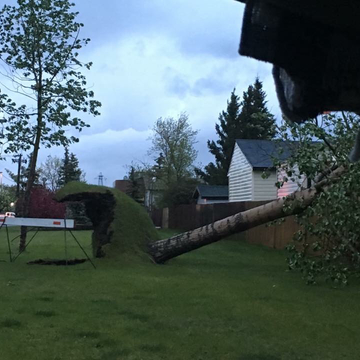 Wednesdays wind storm in Airdrie AB