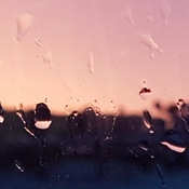 rain drops at sunrise