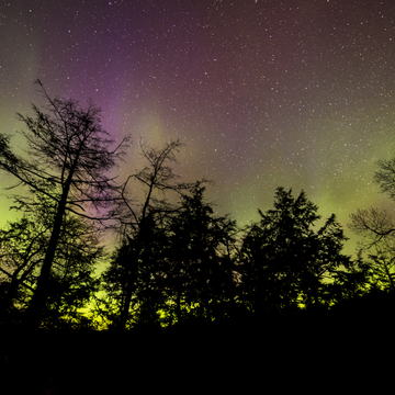 Northern lights show