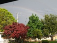 Rainbow during the storm. - Chatham, ON