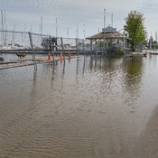 Hamilton Harbour Flooding