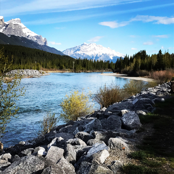 Morning run along the Bow River