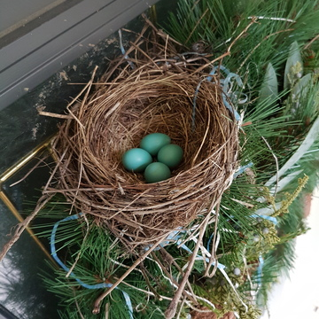 Front Door Robins Nest