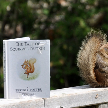 Squirrel Nutkin's double