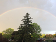 Looking for a pot of gold - Dundas, ON, CA