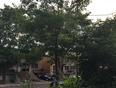 Fin de journée d'été à Ahuntsic