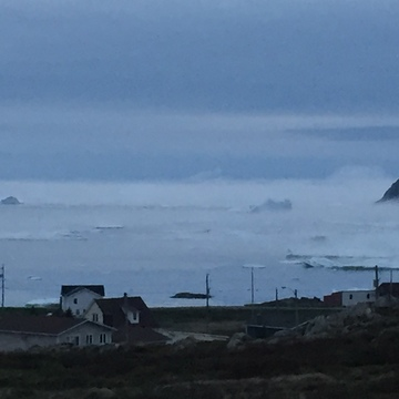 Mystical morning in Twillingate