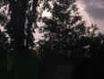 Lightning - Sadowa, ON, CA