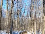 Promenade en famille  - Coteau-du-Lac, QC
