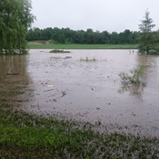 Pond overflowed