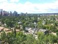 Summer - Calgary, AB