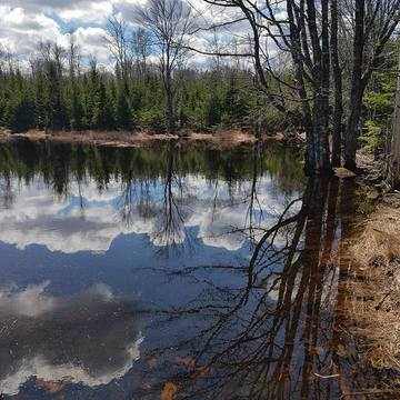Still Water on South Mountian Nova Scotia