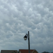 Mamatocumulus Clouds in Whitby!