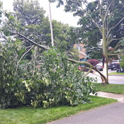 High winds in Courtice Ontario