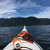 Kayaking the Burrard Inlet