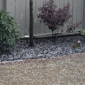Hail in Stoufville
