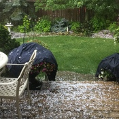 Hail Storm in Beamsville ON