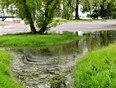flooding in Belleville - Belleville, ON