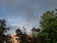 morning rainbow - Owen Sound, ON