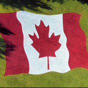 Canadian flag at upper queens park
