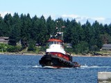A Canadian Icon - Sooke, BC
