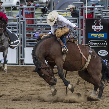 Animal Athletes RULED the 3rd Annual Arnprior Stampede
