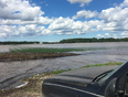 Flooding in new Tecumseth in onions  - Beeton, ON, CA