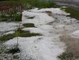 hail storm - Plaster Rock, NB