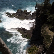 East Coast Trail