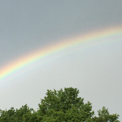 Double rainbow in my backyard!
