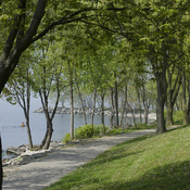 Trail by the lake in Etobicoke