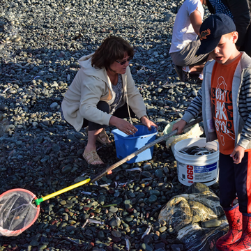 Kids Love A Capelin Roll