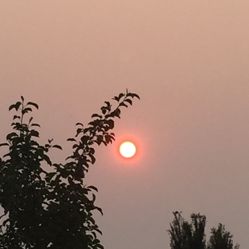 Smokey sunrise!