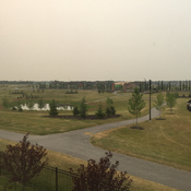 West Edmonton Haze