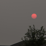 Smoke causes red sun