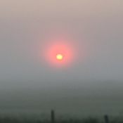 Sunrise -Camrose