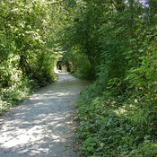 Trailin' it in Pitt Meadows BC