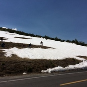 Snow in the Summer in Rocky