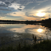 Morning sunrise over Musselman's Lake